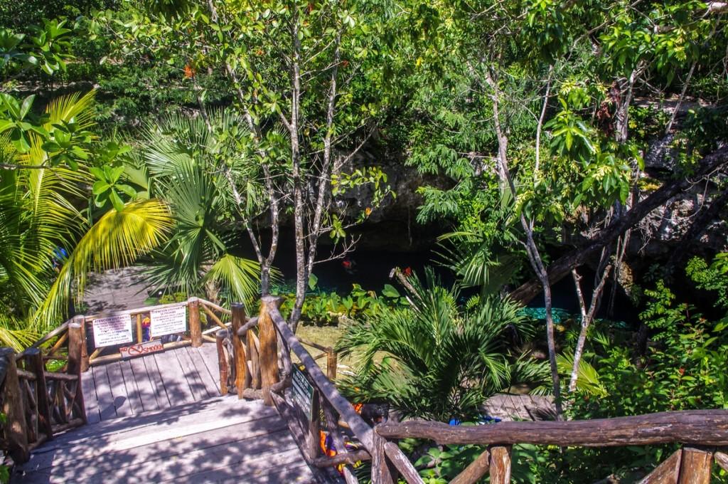 Escaliers vers Grand Cenote