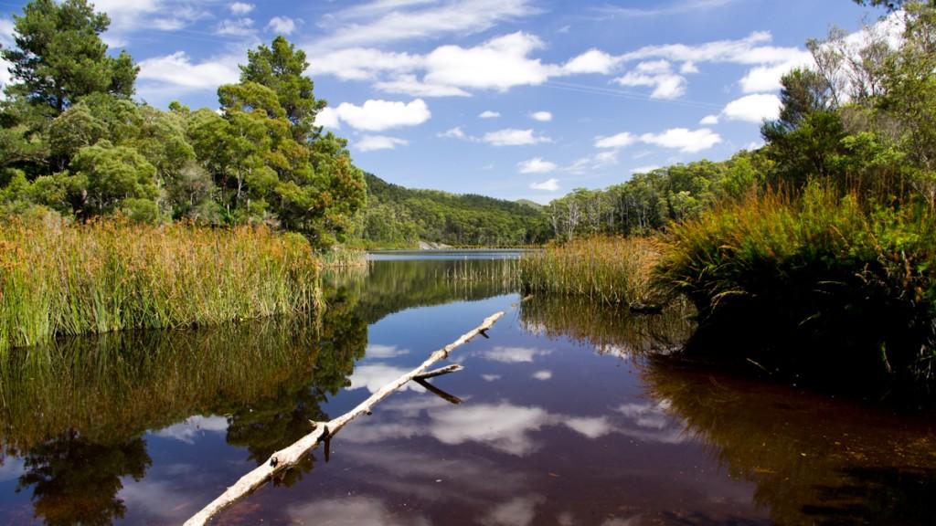 Lake Llewellyn, Rocky Cape NP