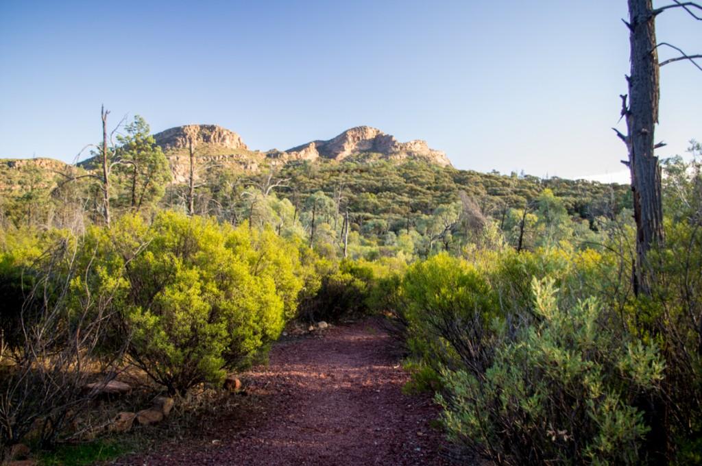 La vue depuis Arkaroo Rock