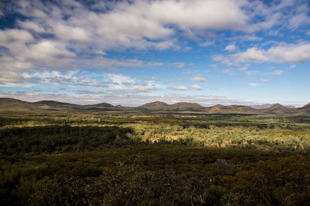 Wangarra Lookout