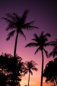 Sunset à Darwin