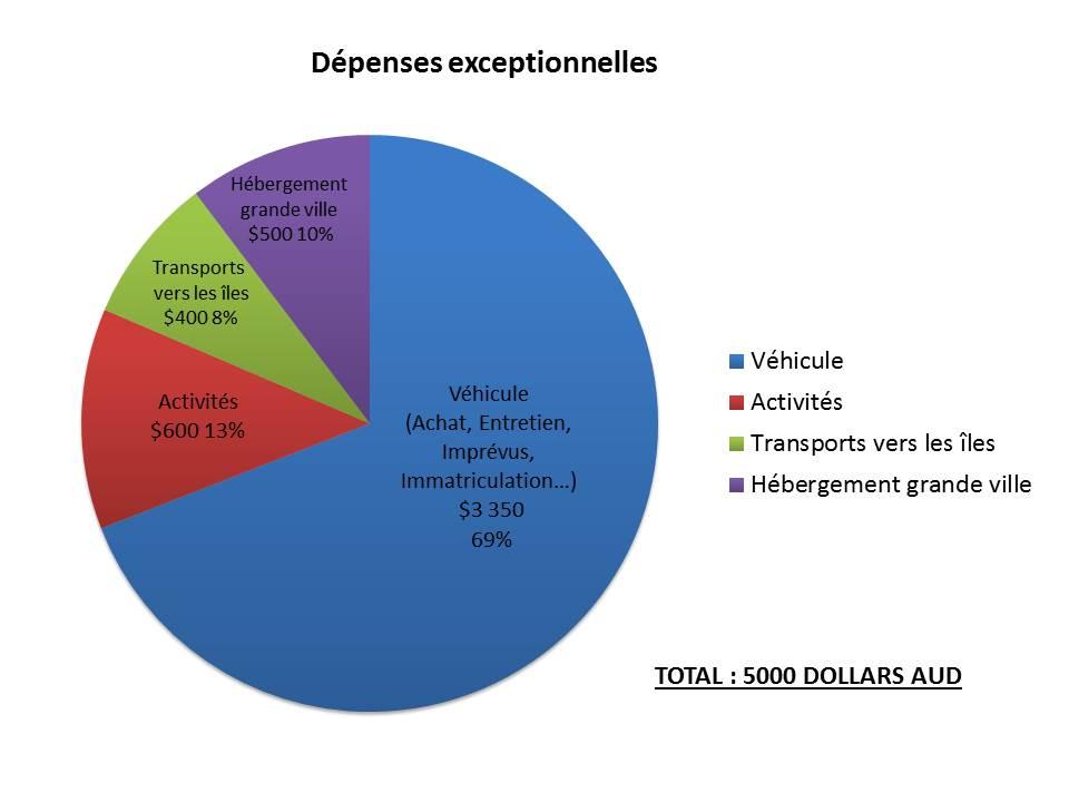 Les dépenses exceptionnelles